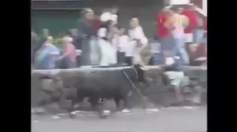 Mess with the bull you get the horn.  https://t.co/bJ8fyAKHLS