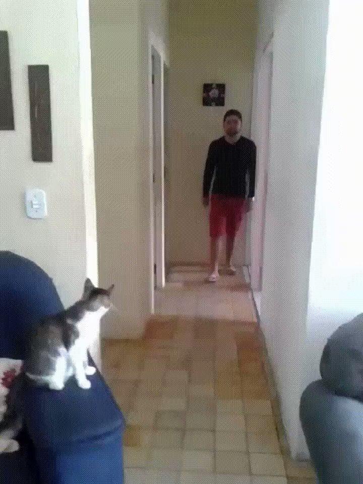 Kool Kitty.... https://t.co/mBdsakJvlL