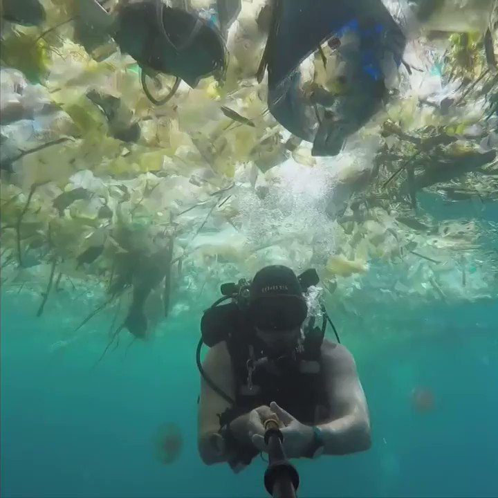 RT @BBCWorld: Diver swims through thick soup of plastic waste near Bali https://t.co/u3NbHqmYln