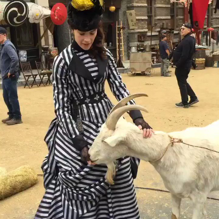 Hello this is Billy. My goat ????. #bts #timeless @nbc @NBCTimeless https://t.co/k5vhahZWI0