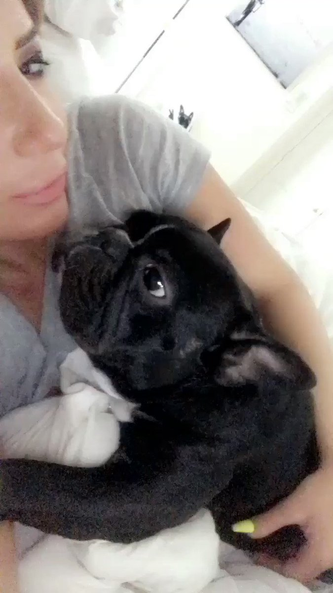 Mornings with Icon ♥️🐶 Pvnhp1B76w