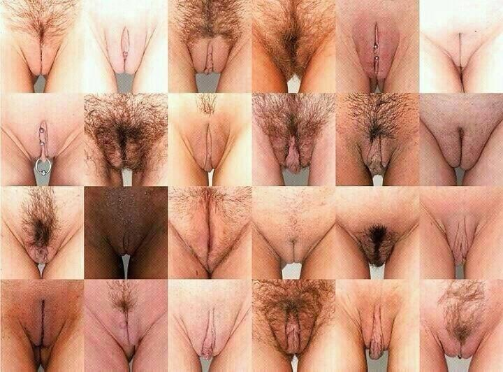 Diferentes vulvas, en la diversidad esta el gusto http://t.co/PFpZvmMk