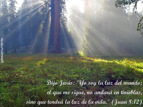 No hay silencio que Dios no entienda, ni tristeza que él no sepa, no hay amor que el ignore, ni lágrimas que no valore http://t.co/myNctqok