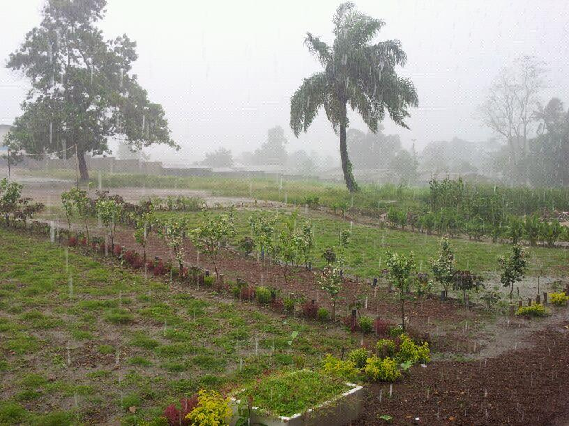 RT @Shafisial: Front view of Jamia #Ahmadiyya #SierraLeone during the rain!! #Africa #Rainyseason http://t.co/2is2P8Li