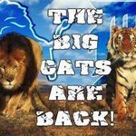 RT @JimBoudreau63: The Big Cats are back!! #Lions #Tigers http://t.co/at3WGNK4
