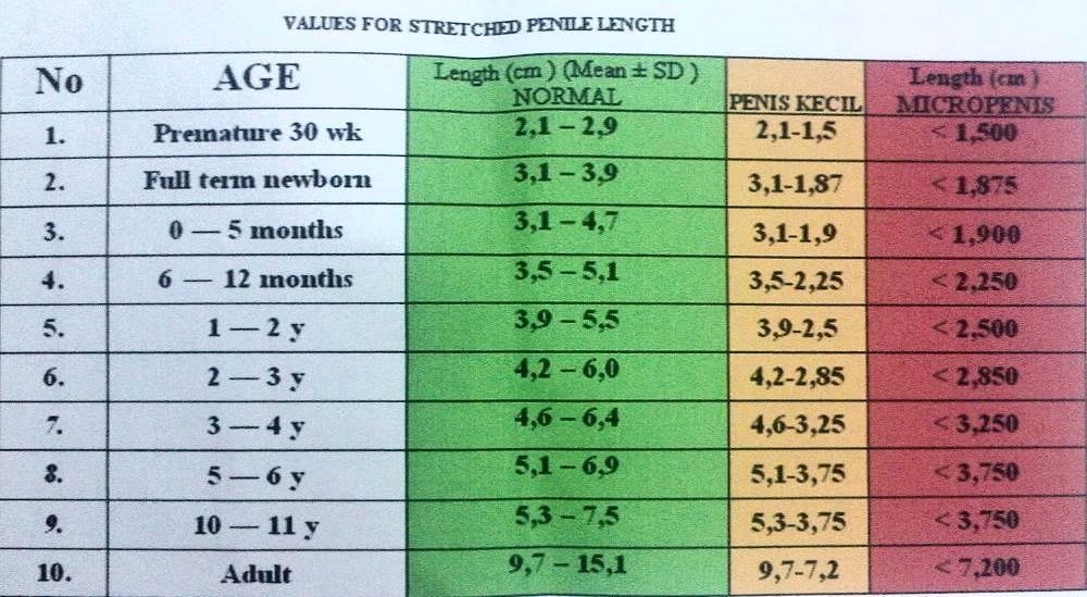Ukuran penis normal berdasarkan umur dapat dilihat di tabel ini @DrSLSimonSpKK http://t.co/W6QqoT5F