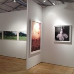 RT @artnet: Seen at Scope: Hagedorn Foundation Gallery, exhibiting at booth H03
