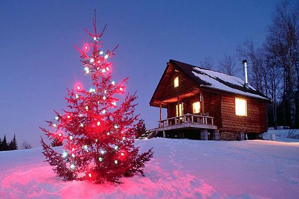 Отдых на новый год дом отдыха