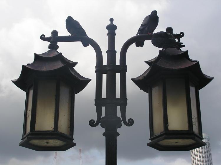 Ответить. pic.twitter.com/lNCQEGgq. @vesti_news.  5 января 1731 года в Москве зажглись первые уличные фонари.