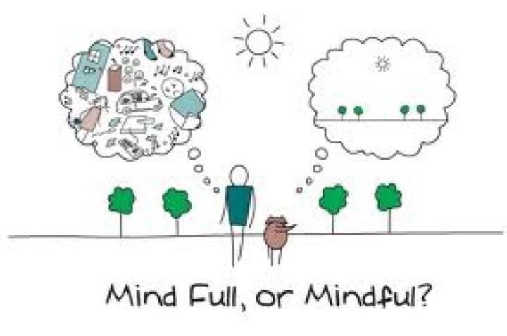 """Cat"" mind.....thanks Debora http://t.co/F1N2Ede2"