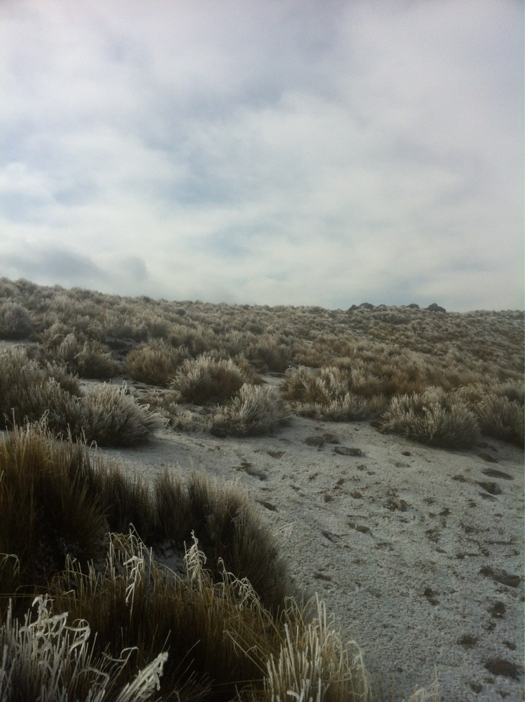 @NairoDZevacH @jazzgom @rchargoy  gran descenso! Hielitoooos!!!! http://t.co/uKPtnKaB