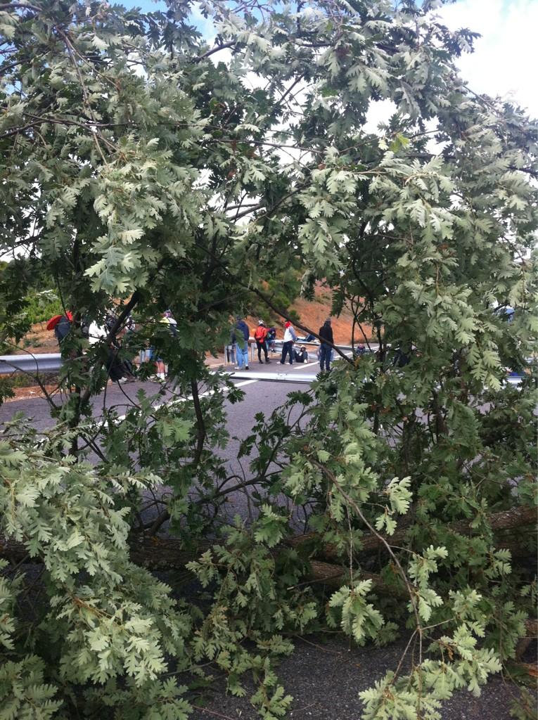 Los mineros vuelven a cortar la A 6 y la nacional 6 con barricadas de arboles y protecciones de la carretera http://t.co/GNwVHU6L