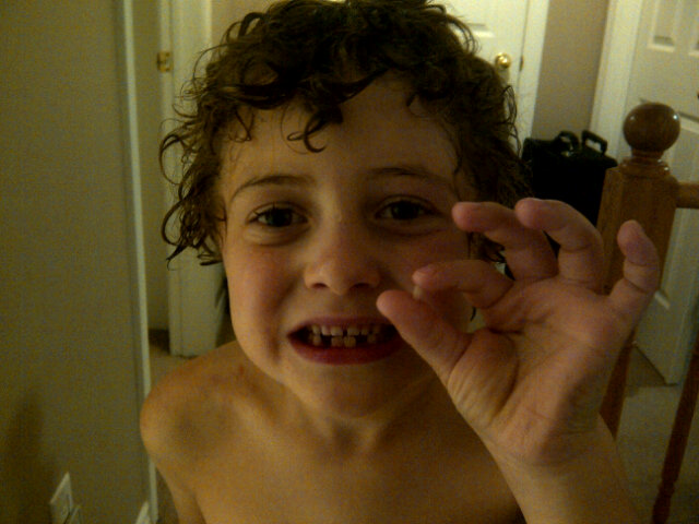 I was just drying bubba off after his bath and knocked out his loose tooth! :') http://t.co/3SUBKfPc