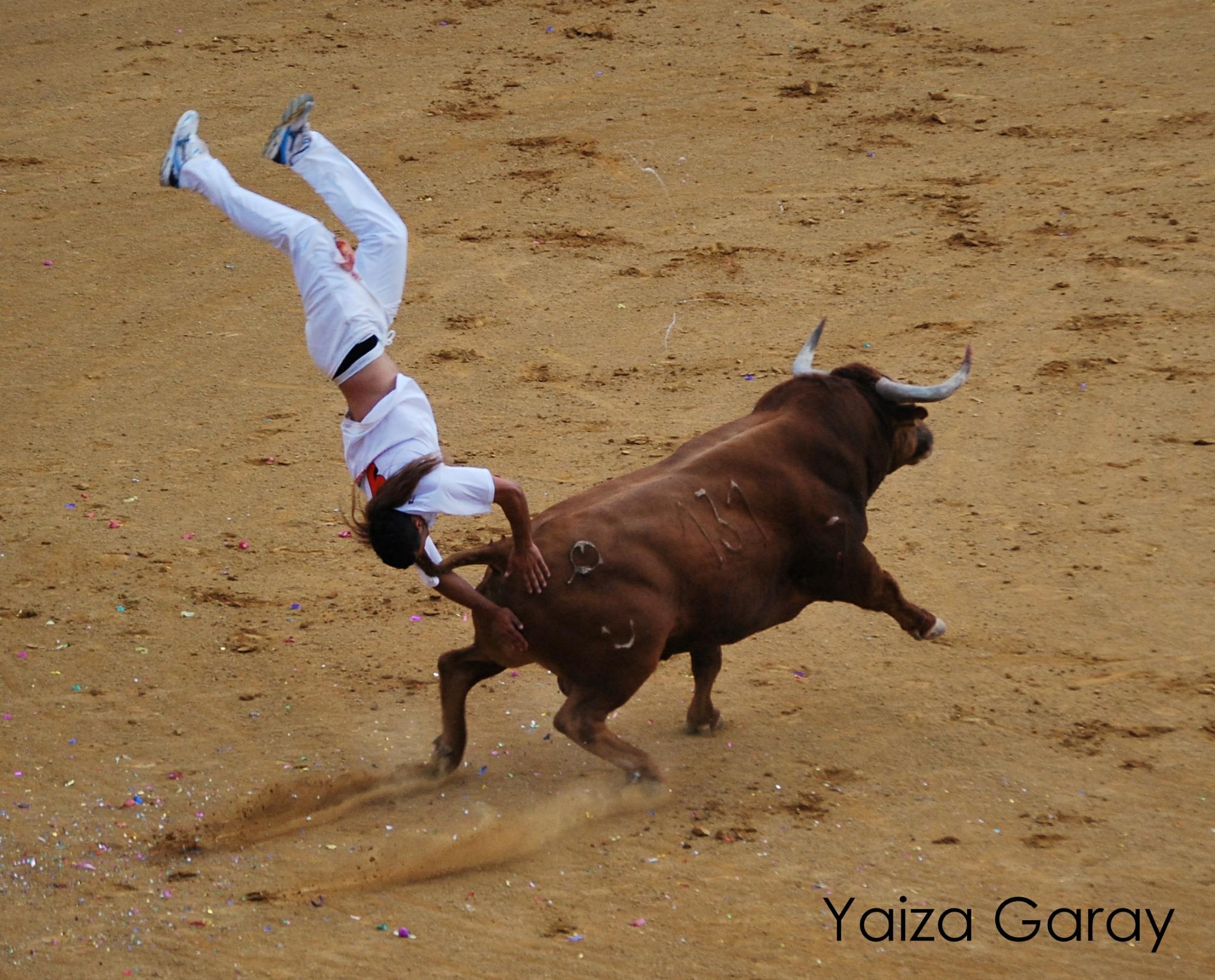 Momento de la cogida Cristian Parra ' Cristiano ' Recupera te pronto campeón! http://t.co/WIoQNoPR