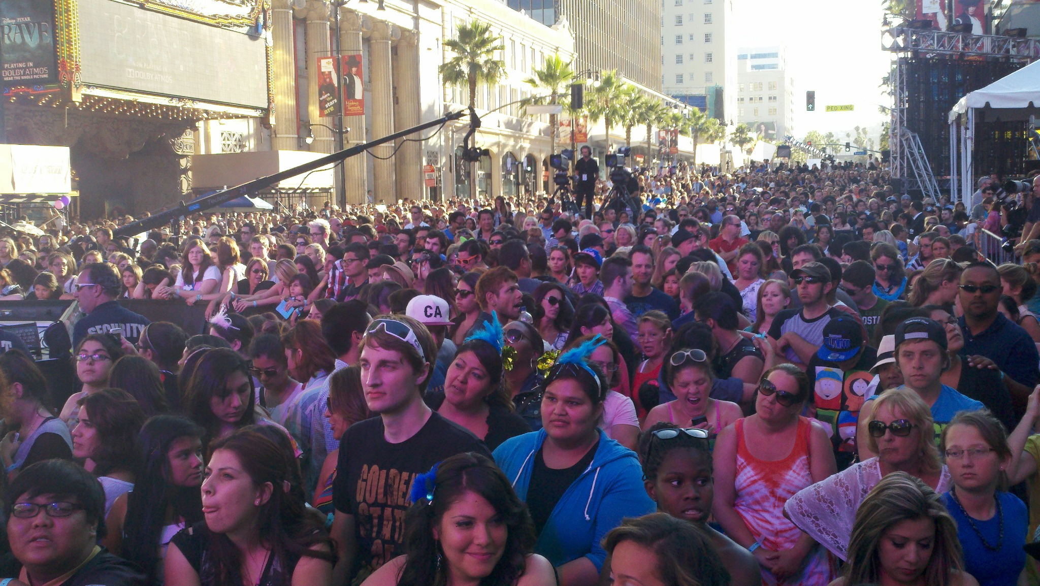 #KatyCats have invaded L.A. and it's HOT! Here's a shot of the #KatyCats at the show.  #KatyPerryNow #SummerBeats http://t.co/81hlbjsj