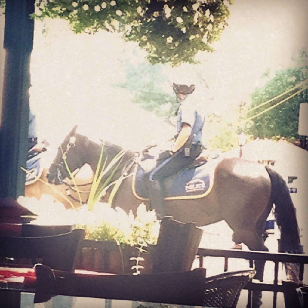 @kcpolice Horseback at the MLB All Star parade at the Country Club Plaza. #AllStarGame http://t.co/fvhBBsPR
