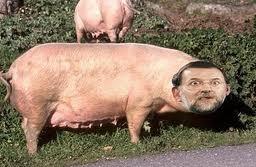 Para estas navidades compra tu cerdo de #Rajoy rico, bonito, barato y sin IVA al 21% #Congreso http://t.co/4TQczacA