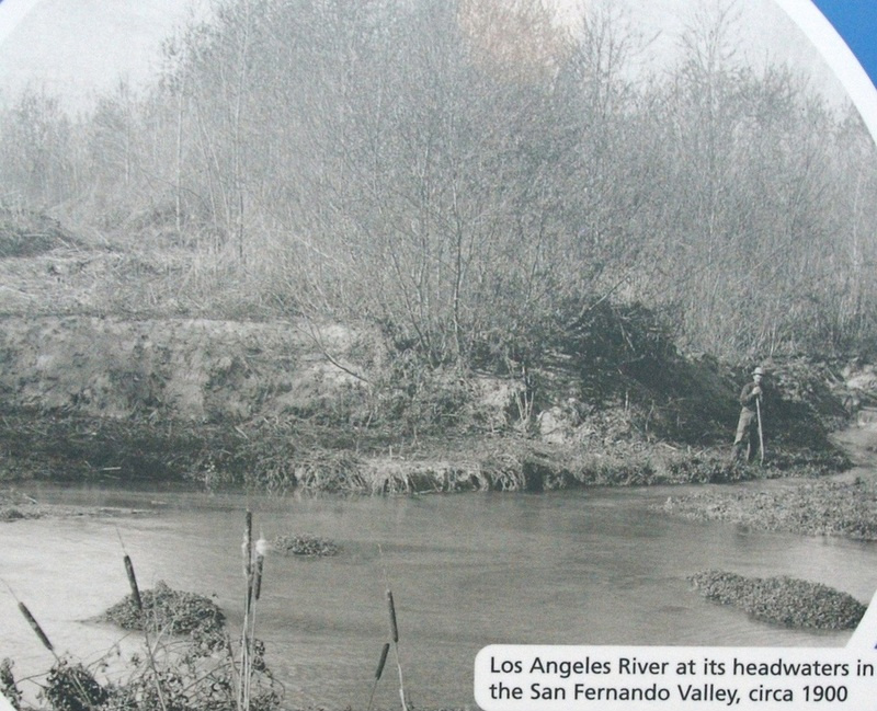 1900 LA River almost at its head waters. Notice all the trees. It can all come back again! @JoshPostLA @Silverlake #LA http://t.co/ksRvU8te