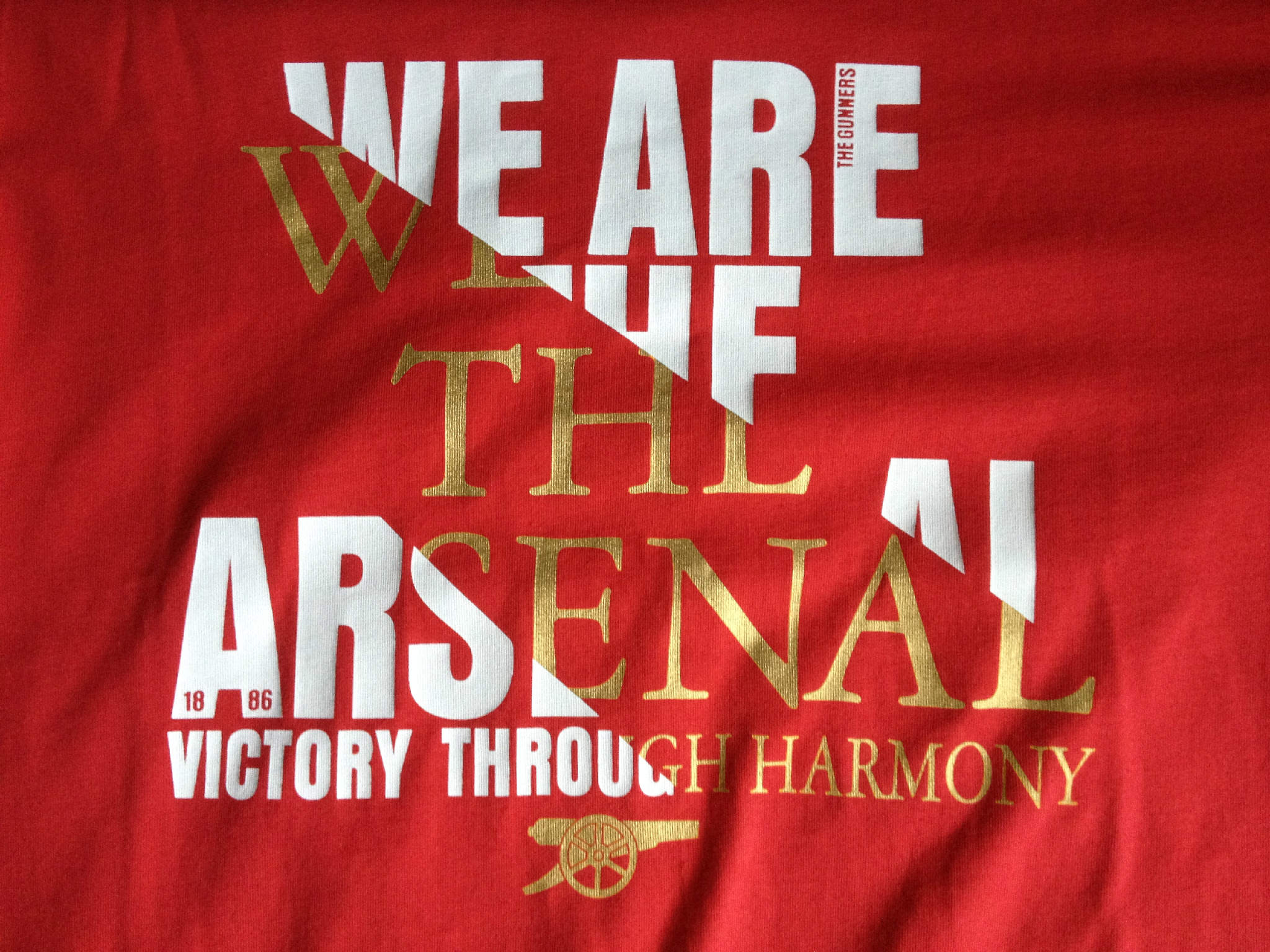 Victory Through Harmony. I'm clearly ready for the 2012/2013 season. #Arsenal http://t.co/Whurzye9