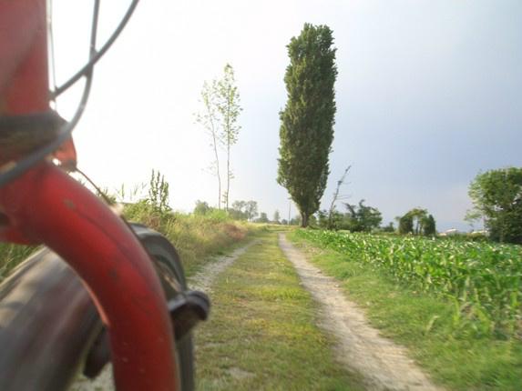 @redsilky: da repubblica.La musica del ghiaietto sotto le ruote non ha prezzo. #biciestate #Mozzanica #Bergamo http://t.co/FMsxQDTG'