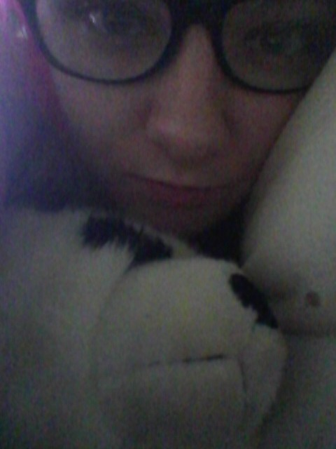 Keely the panda. <3 http://t.co/5Vnp41jd