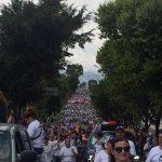 Hoy el Táchira reclama PAZ! @NicolasMaduro el Táchira conciencia de Venezuela exige justicia, paz, exige cambio!! http://t.co/LOH27XjlmX