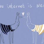 the internet is weird #THEDRESS #whiteandgold #blackandblue #llamadrama http://t.co/LFXTweIxIo