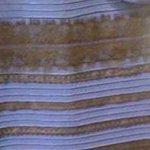 So... what color IS this dress?!?! #whiteandgold or #blackandblue >> http://t.co/zl5mV8uaN1 #Q13FOX http://t.co/KsXErz7hjv
