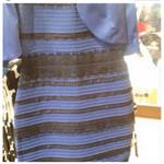 Onko tämä vaate sini-musta vai valko-kultainen?  Äänestä: http://t.co/qmI3UjDD0T #ELCrew #firstworldproblems http://t.co/ahVbjuM4Vw