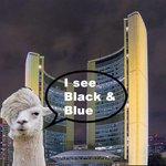 I agree with #Llama - I see #blackandblue #TheDress #Toronto #dressgate Happy Friday! http://t.co/vMteTTdY0m