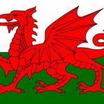 Loads of activities in #Swansea city centre todayto celebrate being Welsh   http://t.co/8pmXV5rH9z…   http://t.co/GDH4LmZDsJ