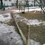Erikoista ilkivaltaa Sepänpuistossa. Jos joku tietää jotain: rakennusvirasto@hel.fi #helsinki #ilkivalta #haapa http://t.co/KlIDfiR2It