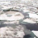 Científicos piden regular la presencia humana en el Ártico ante aumento del deshielo http://t.co/svh9pGQG5m http://t.co/0zLoBe5c5w