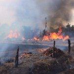 [Audio] La llamada que alertó del accidente en que murió un bombero en Metrenco http://t.co/17Kj64GCRJ http://t.co/5wh8nn4Bd0