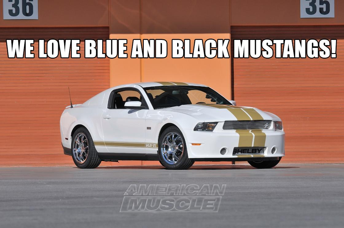 We love Blue & Black Mustangs! #TheDress #whatcoloristhedress #whatcoloristhemustang http://t.co/uFvYoT8CZ5