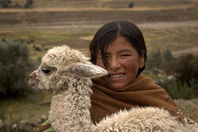 Not over yesterday's #llamadrama? Buy a llama for a family in need: http://t.co/5MGAZ3xrkx http://t.co/Hu6nIwgzou