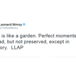 """.@TheRealNimoys last tweet: """"Perfect moments can be had, but not preserved, except in memory"""" http://t.co/F5MTkz6NIr http://t.co/dgorx2PMsJ"""