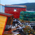 Youve got to love the colours of these old fishing stages! Wanda White sent us this pic, taken in Aquaforte. #cbcnl http://t.co/xNBG4kDRLS