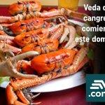 Veda del cangrejo comienza este domingo http://t.co/85aMmOdXRA http://t.co/k9bbmxZaii