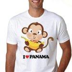 Somos Orgullosos de Ser panameños @ZulayRL @MiguelABernalV No al crizol de Raza.... http://t.co/sNfysvaGr2