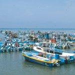 Más 5 mil pescadores artesanales anuncian marcha para el 2 de marzo http://t.co/UgRJTIrRG1 http://t.co/iv4Fi5DtOR