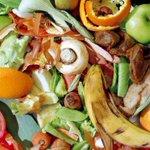 Un tercio de los alimentos producidos en el mundo son desperdicios. http://t.co/v8PQSUzhEf http://t.co/8mpHoyuvkX