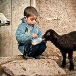 الراحمون يرحمهم الله .. صورة جميلة من صور الرحمة طفل صغير يقاسم حليبه. http://t.co/2Z9Qh9NfTX