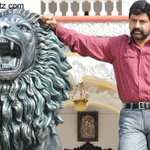 A costly lion to be gifted to #Balakrishna by fans  read here - http://t.co/0mC7ZfuOE8 http://t.co/1bqCiM5Scq