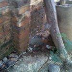 @AKCucuta @opinionweb @catatumbo77 que nos solucionen rápido por favor http://t.co/QqMTcDOwXJ