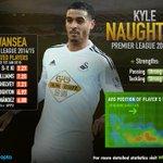 Un resumen de lo mejor del Swansea este año 2015 http://t.co/OhCXydssz8