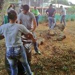 Esta jornada de limpieza en Felipillo...realizada por la PN y la comunidad, es para tener un exitoso #RegresoaClases http://t.co/PNh2ZxI1yf