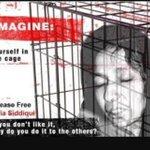 """@Rafiqafzalrind: RT if u support Dr. Afia and demand of her release #FreeDrAfia #FreeDrAfia http://t.co/WjZUXjai63"""