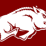 Would love to see my boys at Arkansas go and beat no.1 rated Kentucky today! #WPS #GoHogsGo #UpsetAlert http://t.co/V6ZTguAP3F