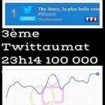 3ème Twittaumat plus de 100 000 tweets #TheVoice et @tf1 règne sur Twitter ce soir @nikosaliagas @MatthieuGrelier ✌️ http://t.co/JXoDUuE6HD